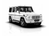Mercedes Benz G <br>W463