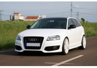 Audi A3 <br>8Р(2004)